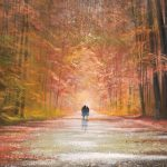 Painting Autumn Landscape Art