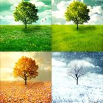 Seasons Of Hope & Despair Poem