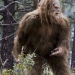 Bigfoot Sasquatch Warning