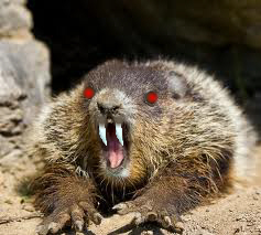 Demonic Vampire Groundhog Warning