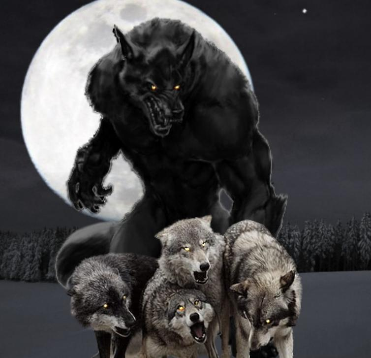 Wolf Moon Warning - Paranormal Activity ForecastParanormal ...