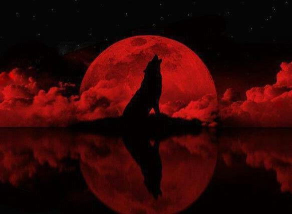 blood red wolf moon eclipse - photo #30