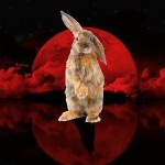 Tetrad Blood Moon Easter Warning